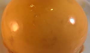 Dôme pomme-caramel