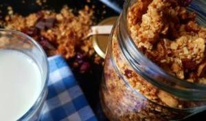 Granola aux noix cranberries noix de coco