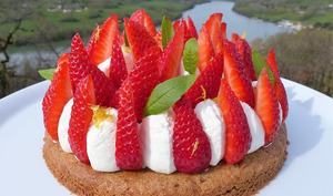 Tarte aux fraises, ganache montée à la verveine citron