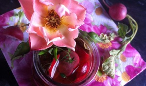 Pickles de radis rose