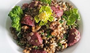 Salade de lentilles blondes, gésiers de canard et Pak Choï