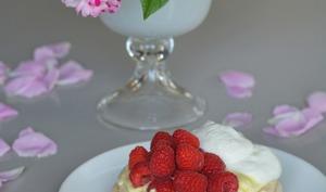 Pavlova glacé à la vanille et aux framboises