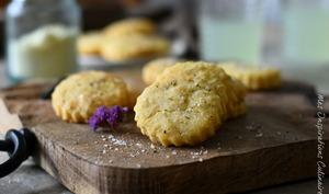 Biscuits apéritif au parmesan