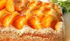 Gâteau moelleux aux abricots et ricotta