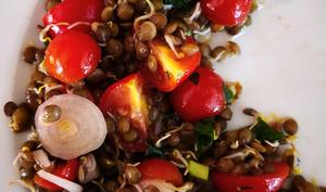 Salade de lentilles germées