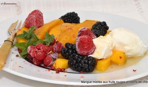 Mangue miellée aux fruits rouges et crème de chèvre