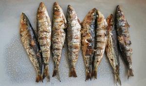 Sardines à griller