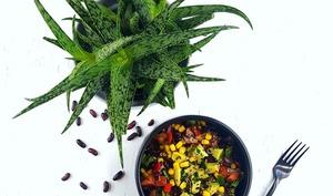 Salade tex-mex au quinoa rouge