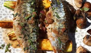 Filets de maquereau en marinade asiatique et légumes rôtis