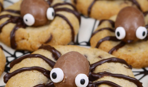 Cookies araignée
