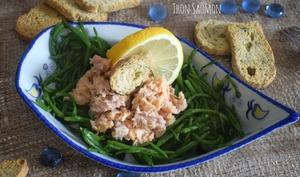 Salicornes thon saumon