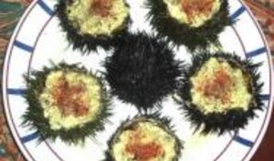 Brouillade d'Oursins en Coque