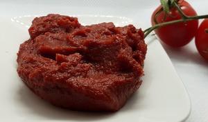 Concentré de tomates maison et sans conservateur