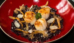 Risotto de riz noir venere aux noix de St-Jacques et girolles