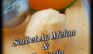 Sorbet au melon et romarin