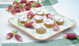 Tartelettes de crème de radis