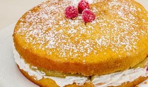 Gâteau rapide rhubarbe ricotta