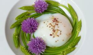 Asperges sauvages, oeuf parfait, poivre du sichuan et fleurs de ciboulette