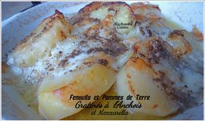 Fenouil gratiné aux anchois et mozzarella