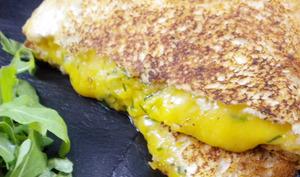 Grilled cheese au cheddar