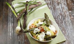 Salade asperges vertes haricots verts au saumon fumé et fromage blanc