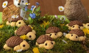Biscuits tortue