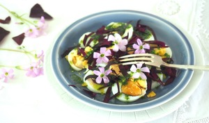 Salade d'oeufs durs à l'oxalis