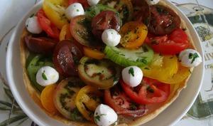 Tarte aux tomates crues, St-Môret et mozzarella
