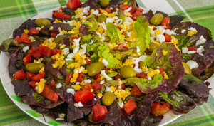 Laitue en salade, tomates, olives et oeufs