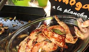 Aiguillettes de canard à la provençale