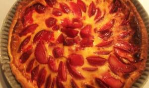 Tarte moelleuse aux prunes rouges
