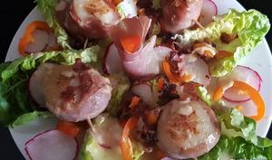Saint-Jacques rôties au jambon cru sur lit de salade