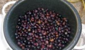 Confiture de Raisins Noirs et Pommes