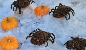 Araignées velues au chocolat
