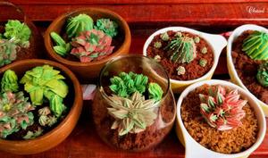 Gâteaux succulentes et cactus au glossy buttercream