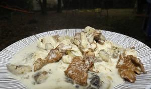 Blanquette de dinde aux champignons de Paris et Girolles