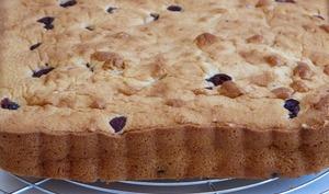 Gâteau au yaourt et cranberries