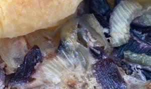Quiche aux oignons – simone en Vrac, en mode Végétal