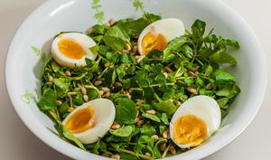 Salade de cresson des guinguettes