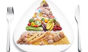 Notions de base de l'alimentation