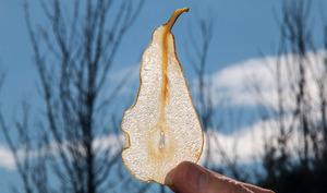 Cristallines de poires