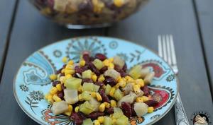 Salade Nopal haricots