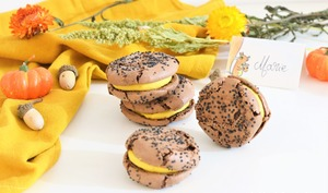 🍂Macarons rustiques choco-courge, coeur cranberry 🍂
