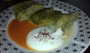 Dolmeh barg-e kalam: dolmas au chou iraniens - Emma cuisine