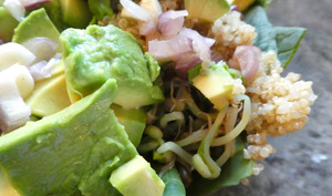 Salade Quinoa, Avocat et Graines germées