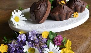 Muffins au chocolat parfumés à la tanaisie