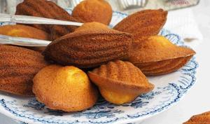 Madeleines Orange Safran