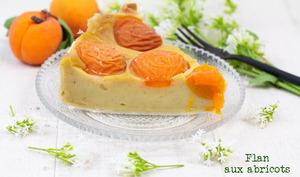 Flan aux abricots végétalien