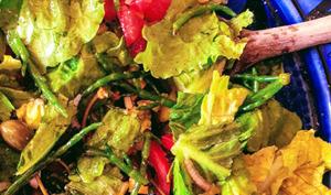 Salade d'été aux salicornes