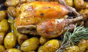 Poulet rôti aux herbes du jardin et aux petites grenailles